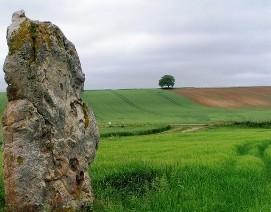 Broussy-Le-Grand_wikichampagne.com_Ezio_Falconi
