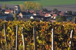Celles-sur-Ource_wikichampagne.com_Ezio_Falconi