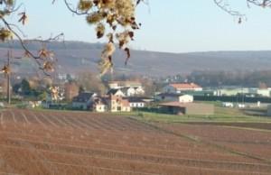 Charly-sur-Marne_wikichampagne_Ezio_Falconi
