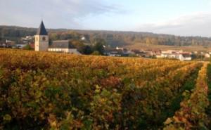 Chigny-Les-Roses_wikichampagne.com_Ezio_Falconi