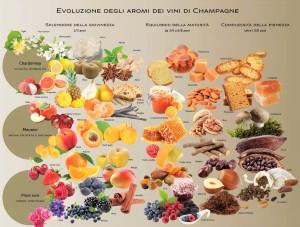 Evoluzione-degli_aromi_dei_vini_di_Champagne_Ezio_Falconi_wikichampagne.com